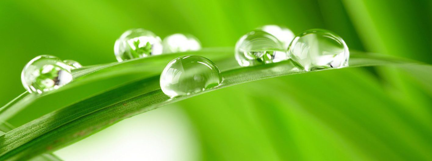 Renewed by  Living Water
